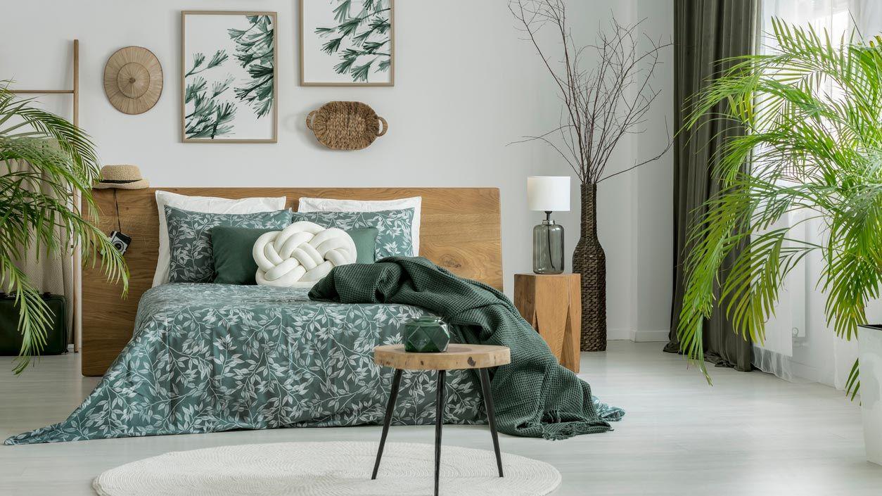 Cuadros y plantas en un dormitorio color verde caqui