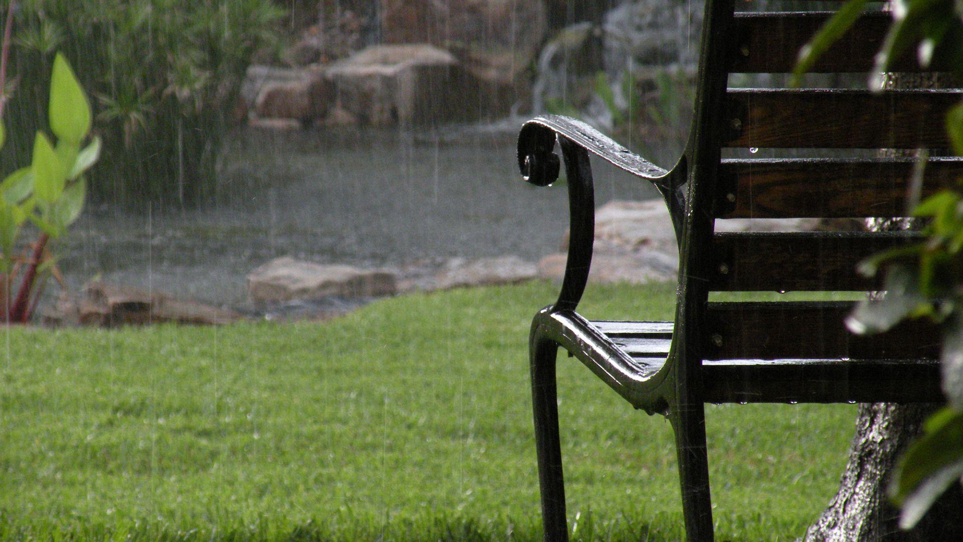 Llover en el jardín