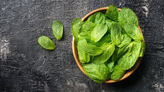 10 plantas para cuidar la digestión - Menta piperita