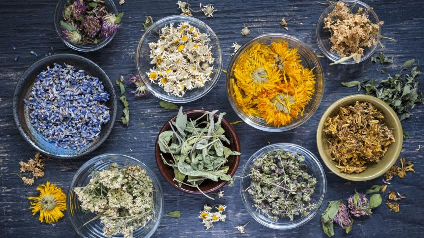 Remedios naturales con plantas medicinales