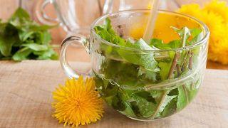 10 plantas medicinales imprescindibles en tu hogar - Diente de león