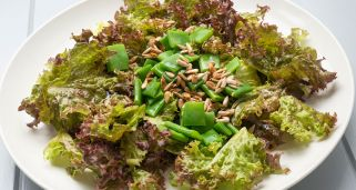 Ensalada de lollo y jud�as verdes