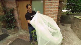 Cómo proteger a las plantas del frío - Paso 3