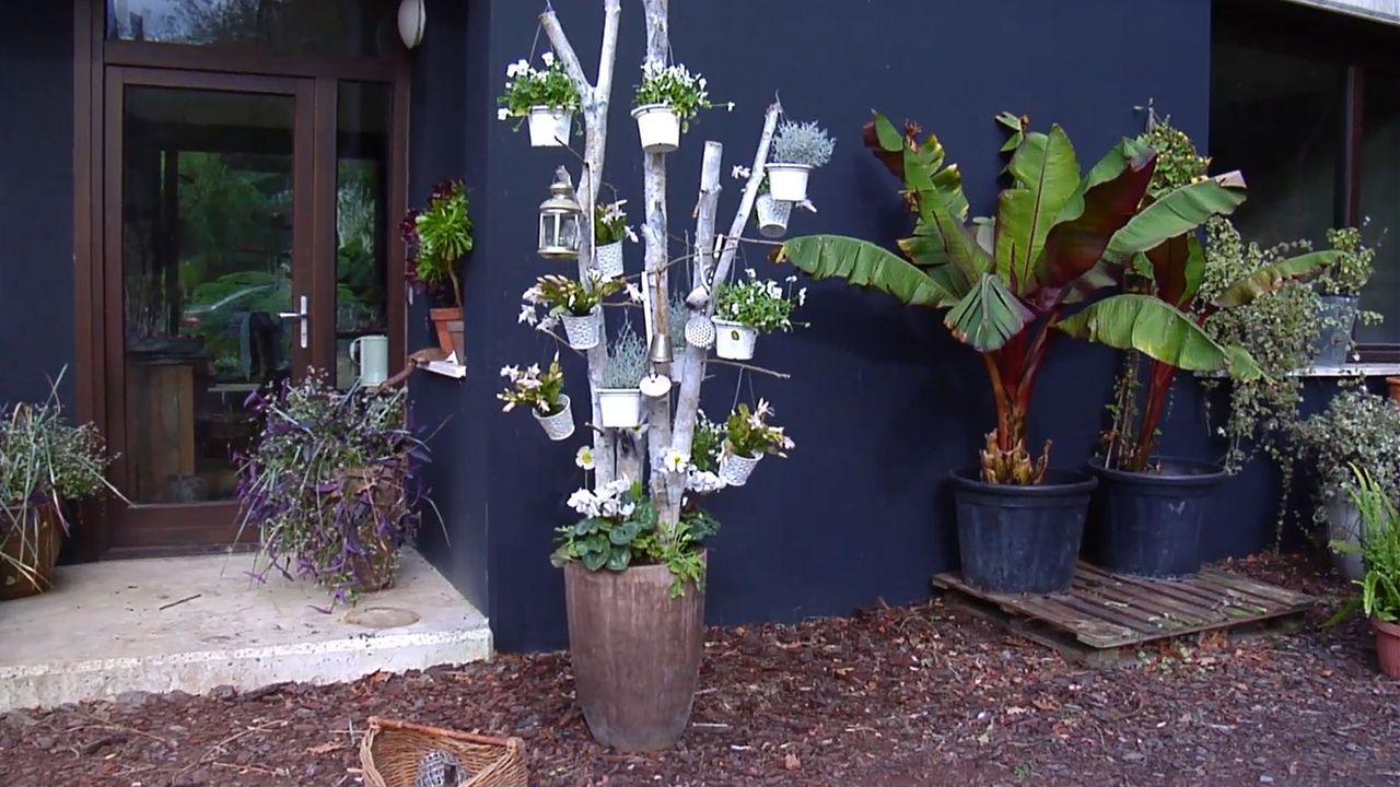 árbol navideño con troncos de abedul