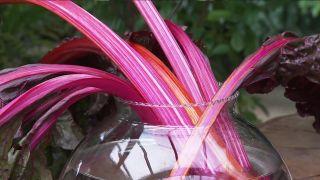 arreglo floral de pencas