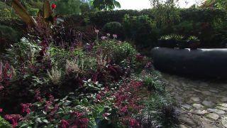 Jardín extravagante