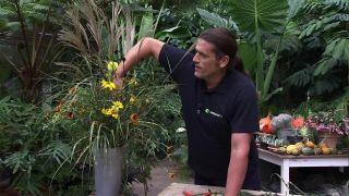 Centro floral con Miscanthus zebrinus