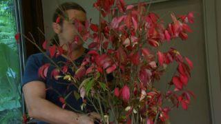 Arreglo floral con Bonetero