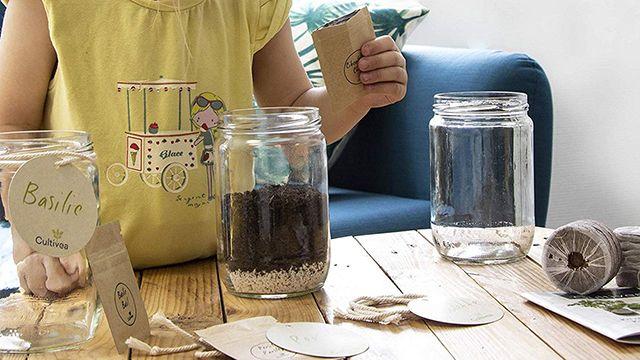 Kit de siembra de hierbas aromáticas