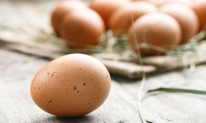 Cómo Sustituir El Huevo En Las Recetas Hogarmania