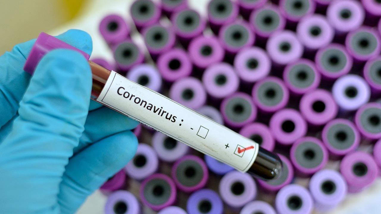 Coronavirus, qué es