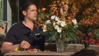 Arreglo floral con la rosa opalia - Paso 2