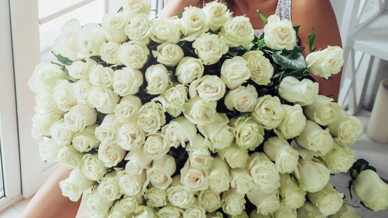 Regalar rosas blancas