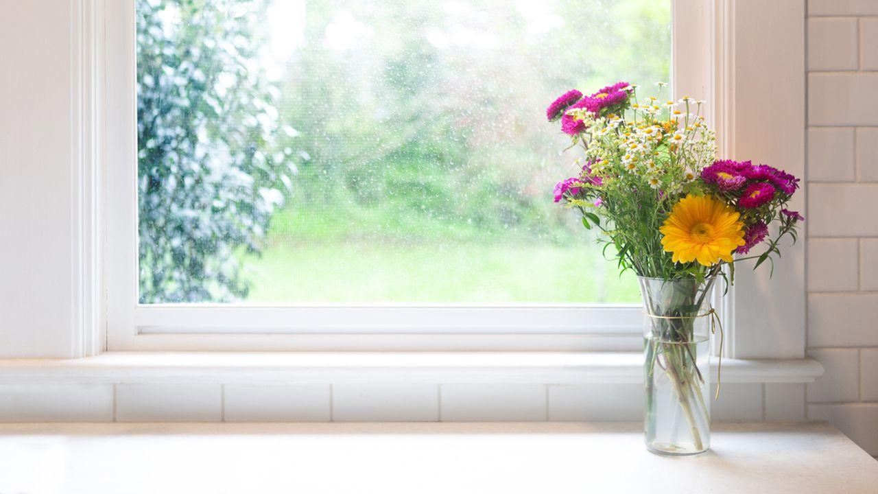 Cómo alargar la vida de tu ramo de flores (trucos efectivos)