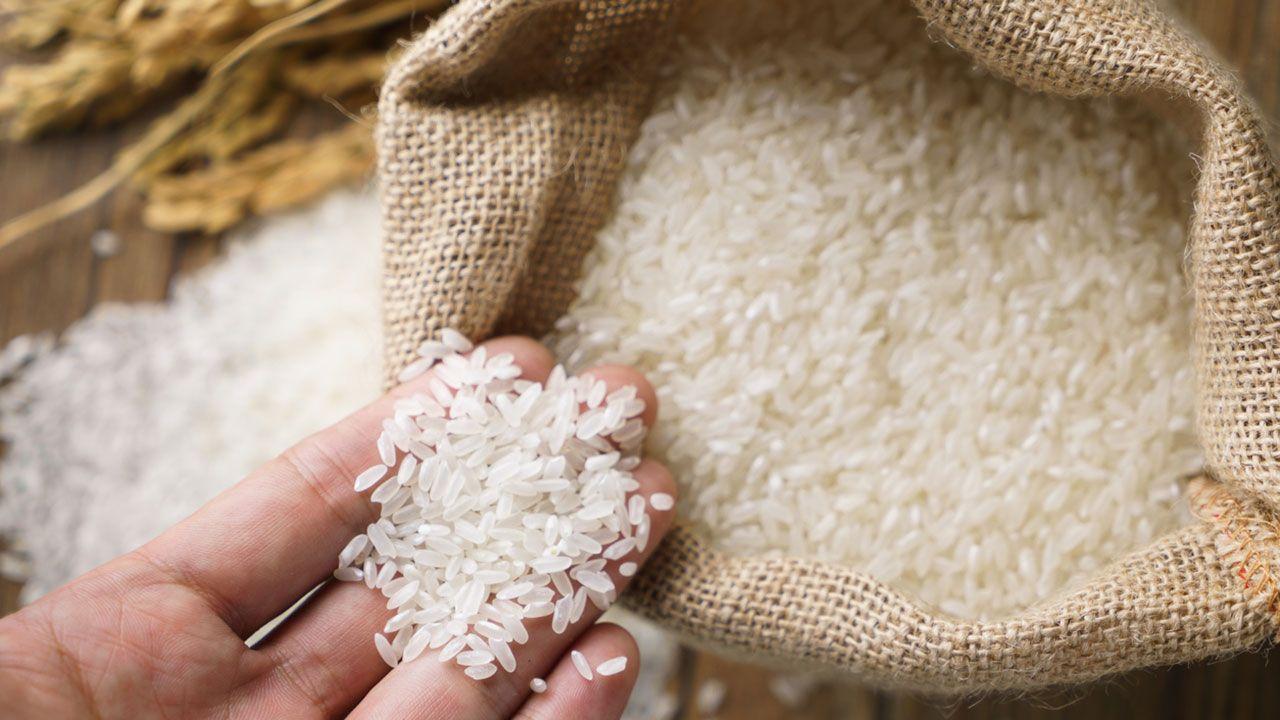 Características del arroz e importancia en la dieta mediterránea