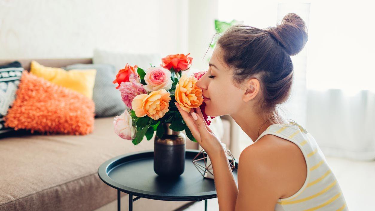Plantas, flores y cojines para decorar una sala pequeña