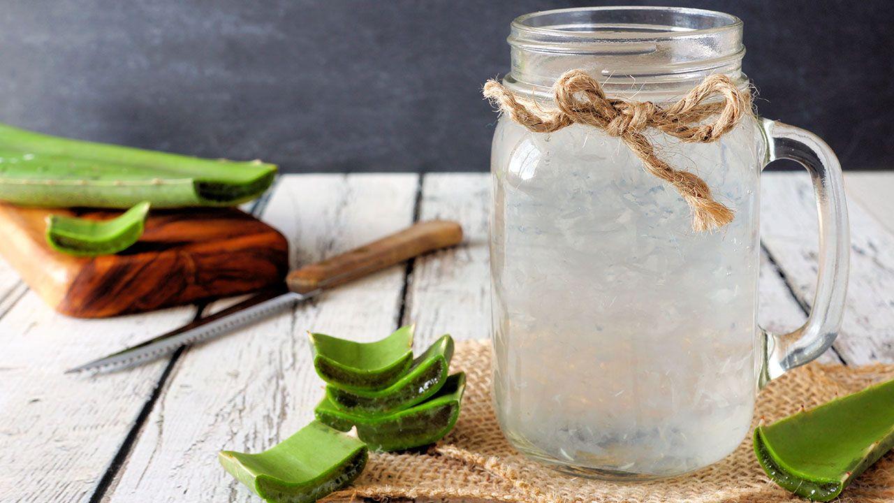 Cómo Hacer Gel De Aloe Vera Casero Y Cómo Utilizarlo Hogarmania