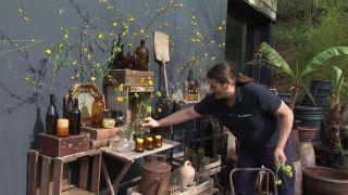 Centro con la kerria japonica