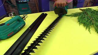 Pinzamiento y cortasetos - Paso 2