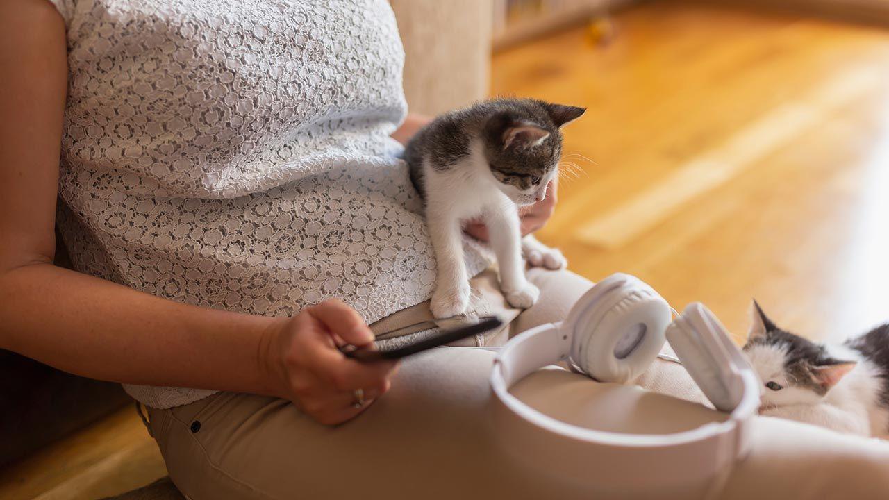 Cómo afecta la música en nuestras mascotas