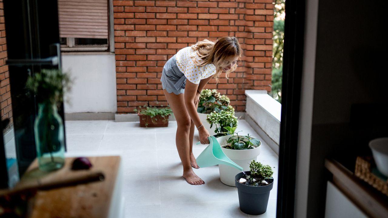 Cómo ahorrar tiempo y agua en el cuidado de tu jardín (consejos prácticos)