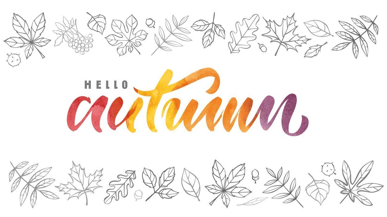 Lettering multicolor o degradados para otoño