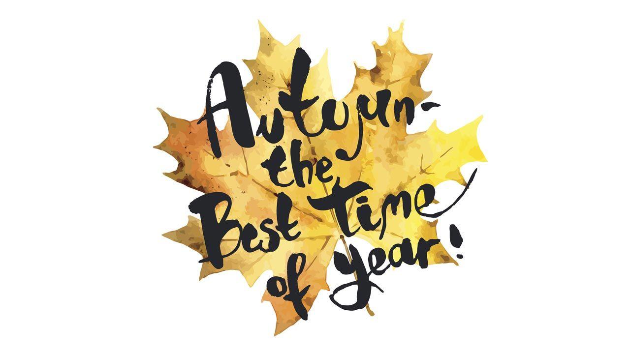 Lettering y elementos naturales para otoño