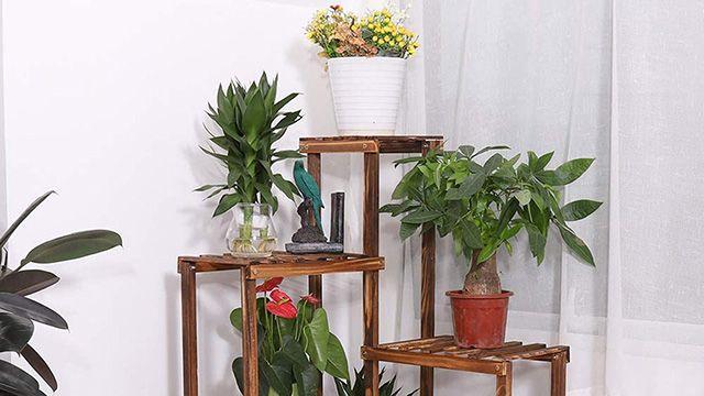 Mueble estantería para las plantas