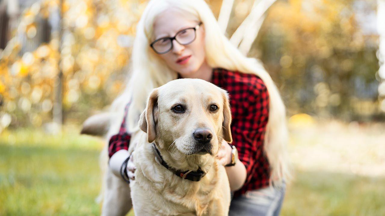 ¿Por qué es buena la terapia asistida con perros?