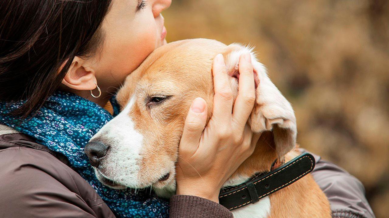 perro abrazado por su dueña