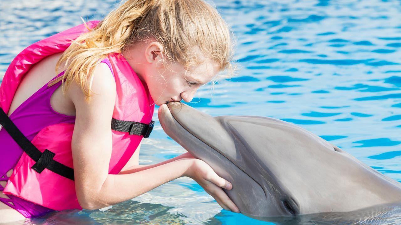 Terapia asistida con delfines
