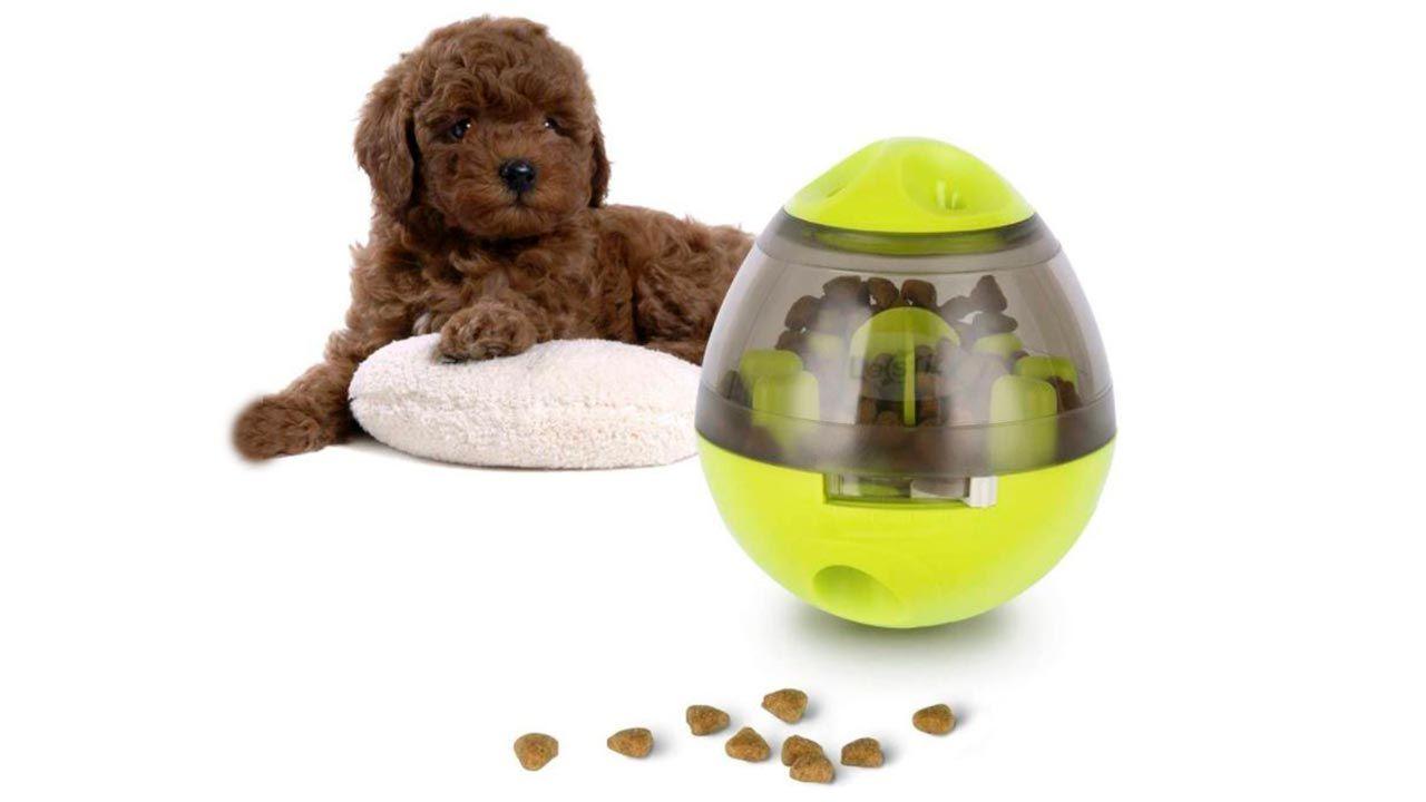 Bola dispensadora de comida para perro