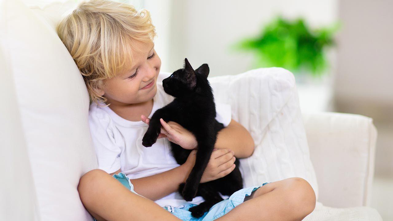 Niño abrazado a un gato negro