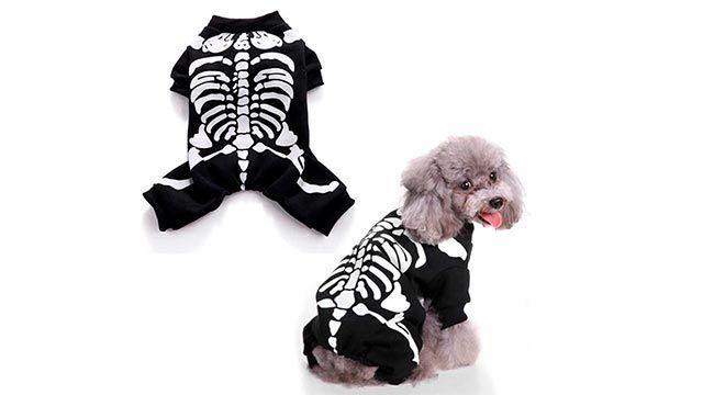 Perro con pijama negro de esqueleto