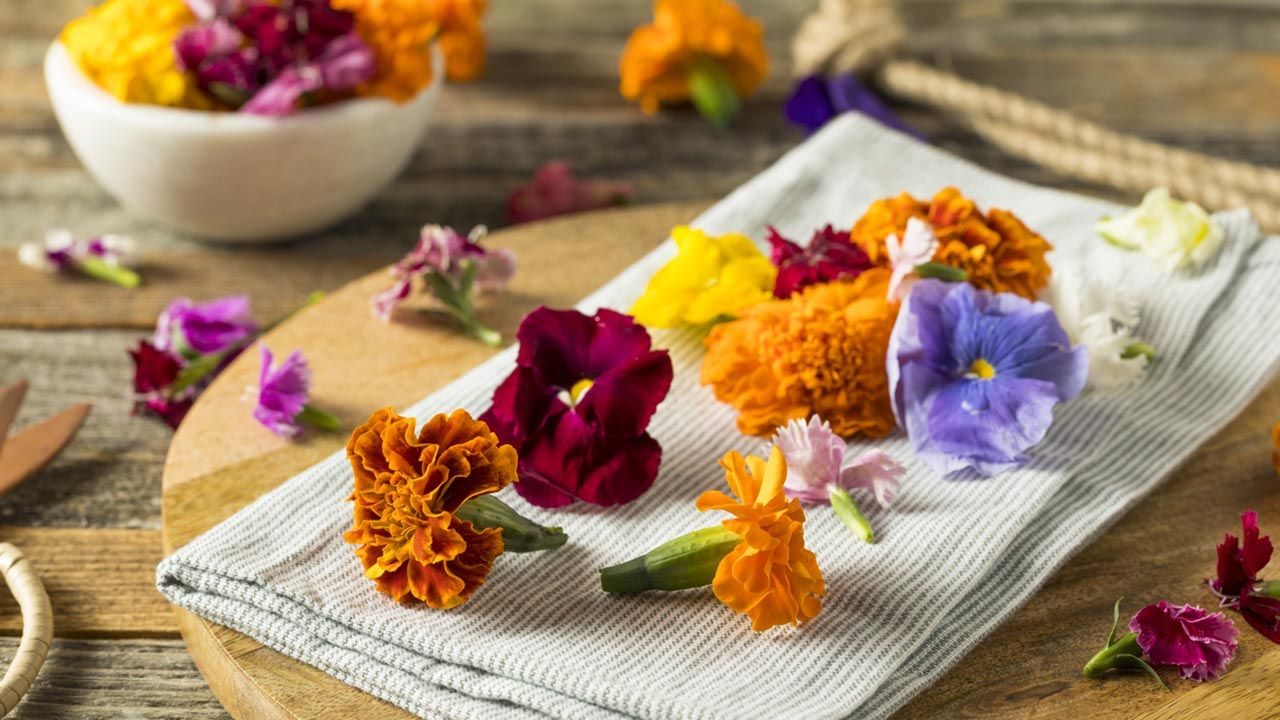 ¿Qué flores son comestibles?