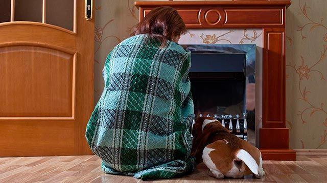 Perro junto a su dueña frente a la chimenea