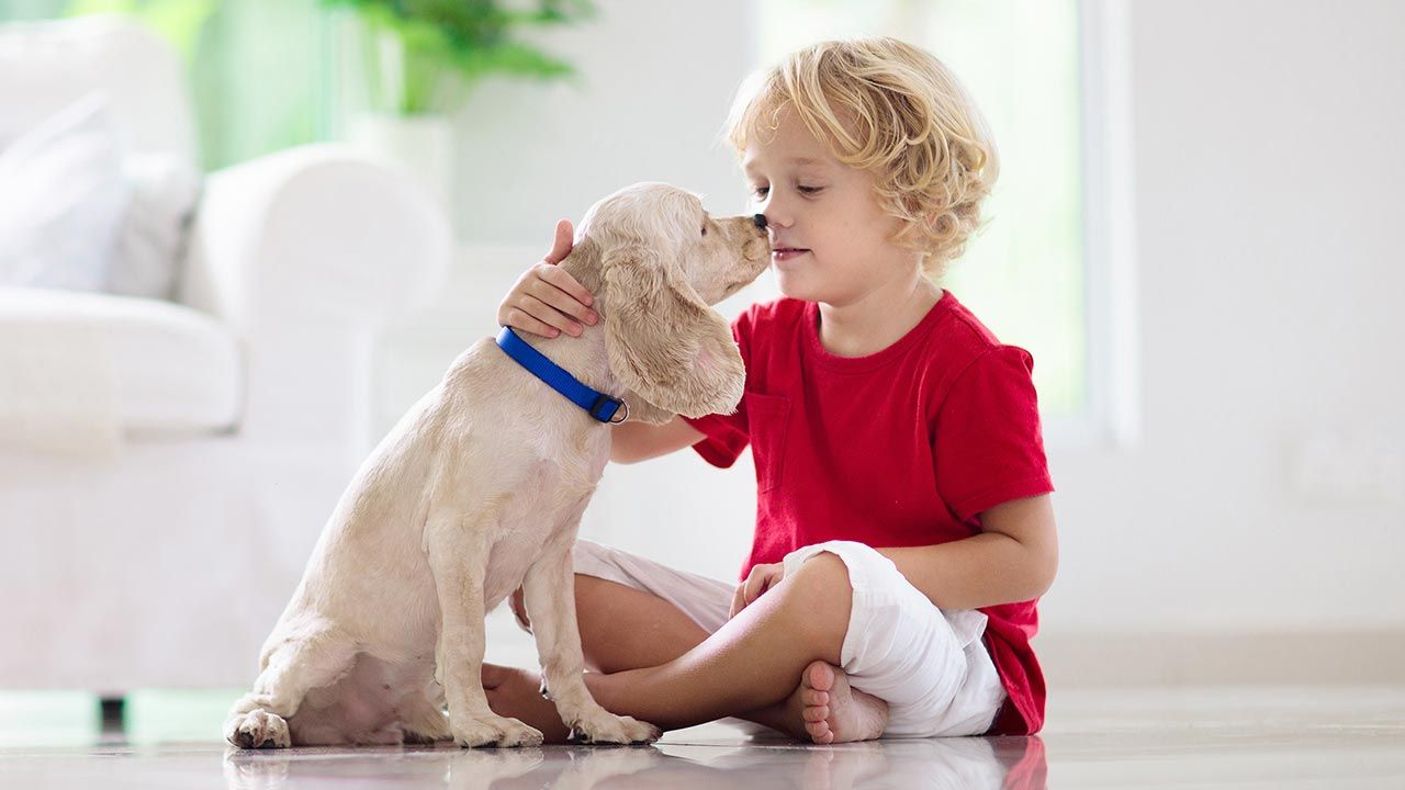 Niño acariciando a su perro