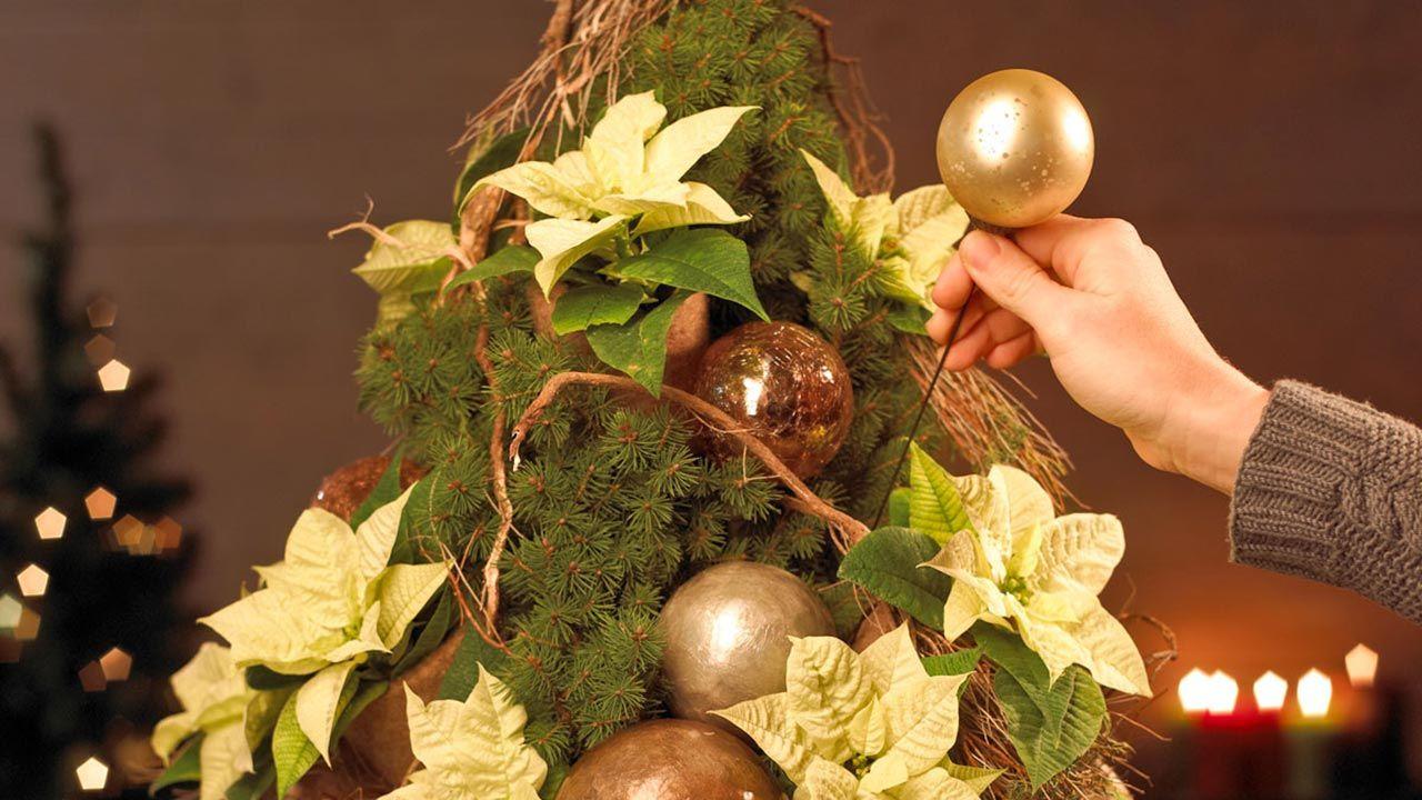 Árbol de Navidad con Poinsettias