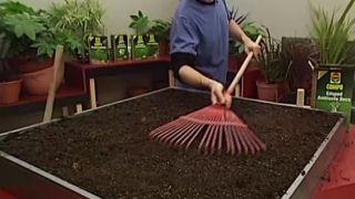 Cómo sembrar el césped