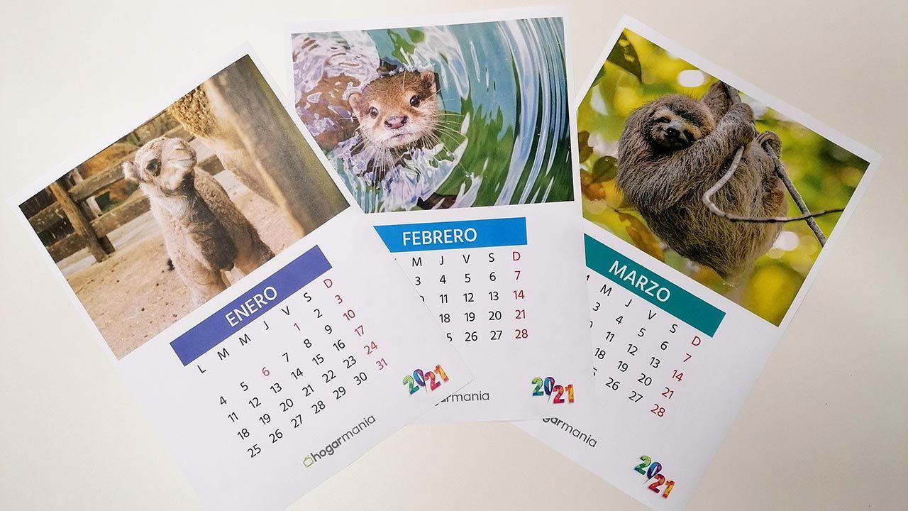¡Descarga gratis el calendario de mascotas 2021!