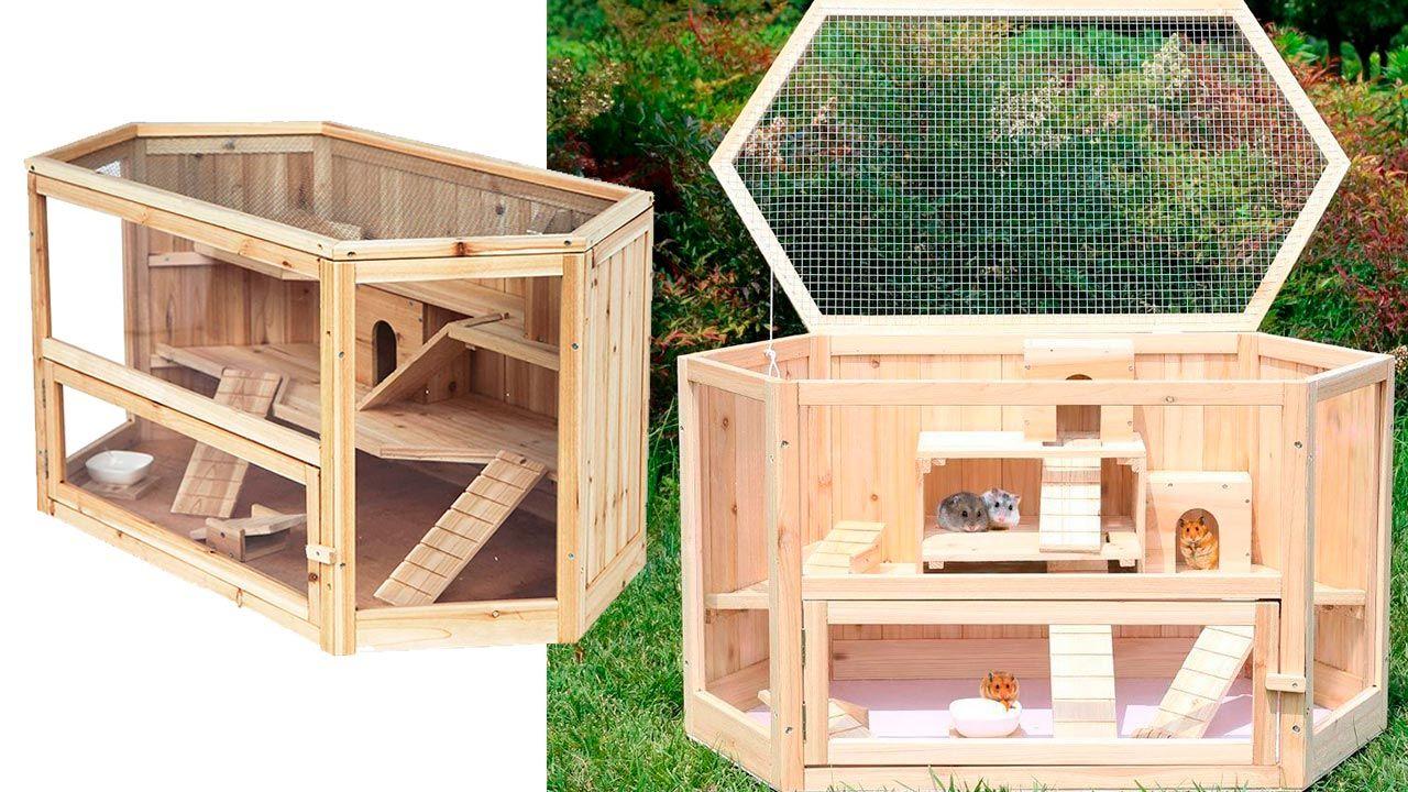 Hámsteres jugando en su jaula de madera