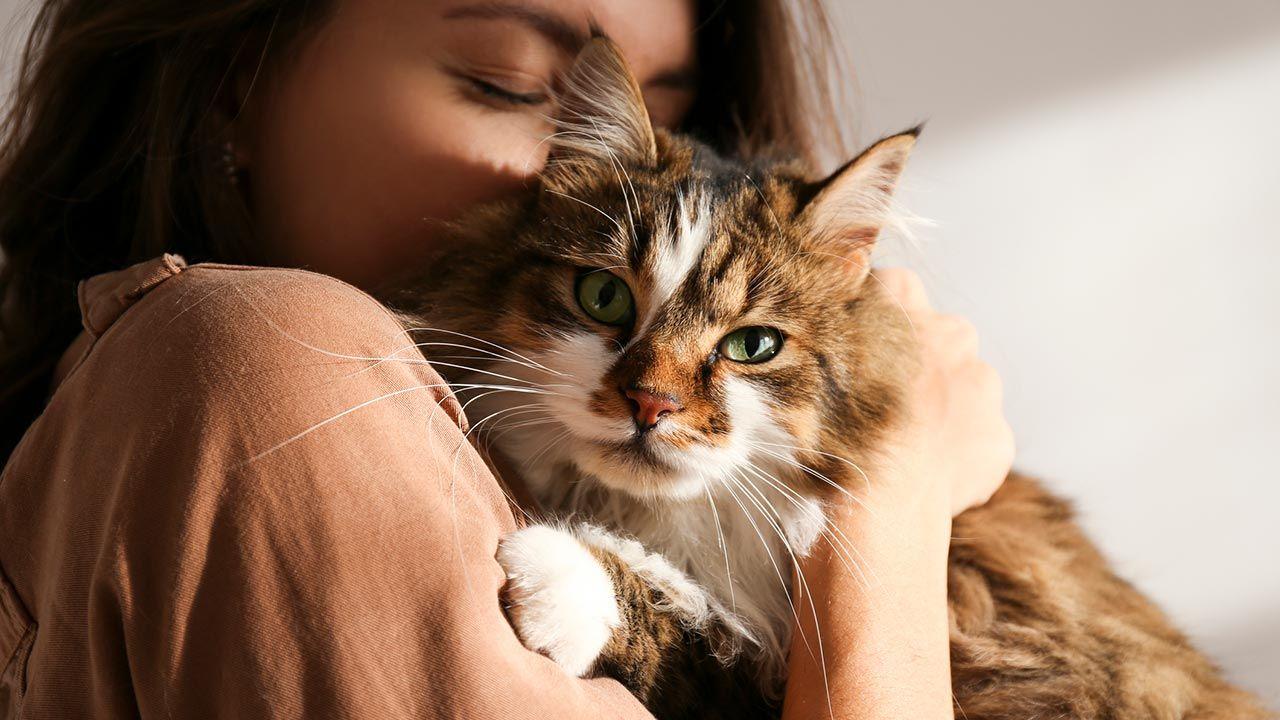 Chica abrazando a su gato