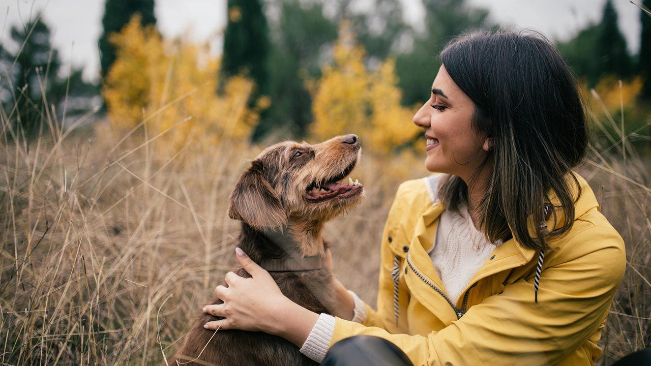 Perro feliz admirando a su dueña