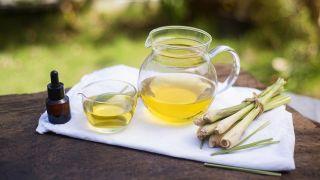 Citronela, planta medicinal antiséptica - Aceite de masaje