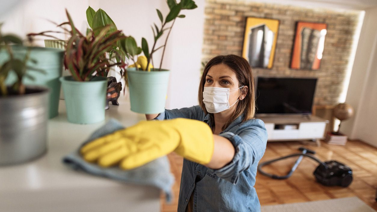 How to clean and disinfect the house before and after Christmas