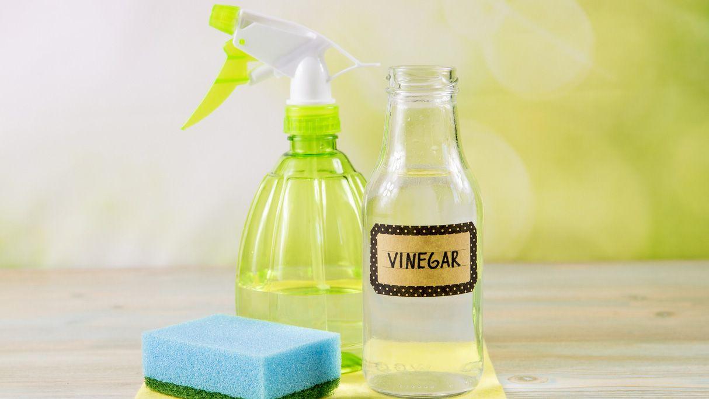Mejores productos de limpieza del hogar