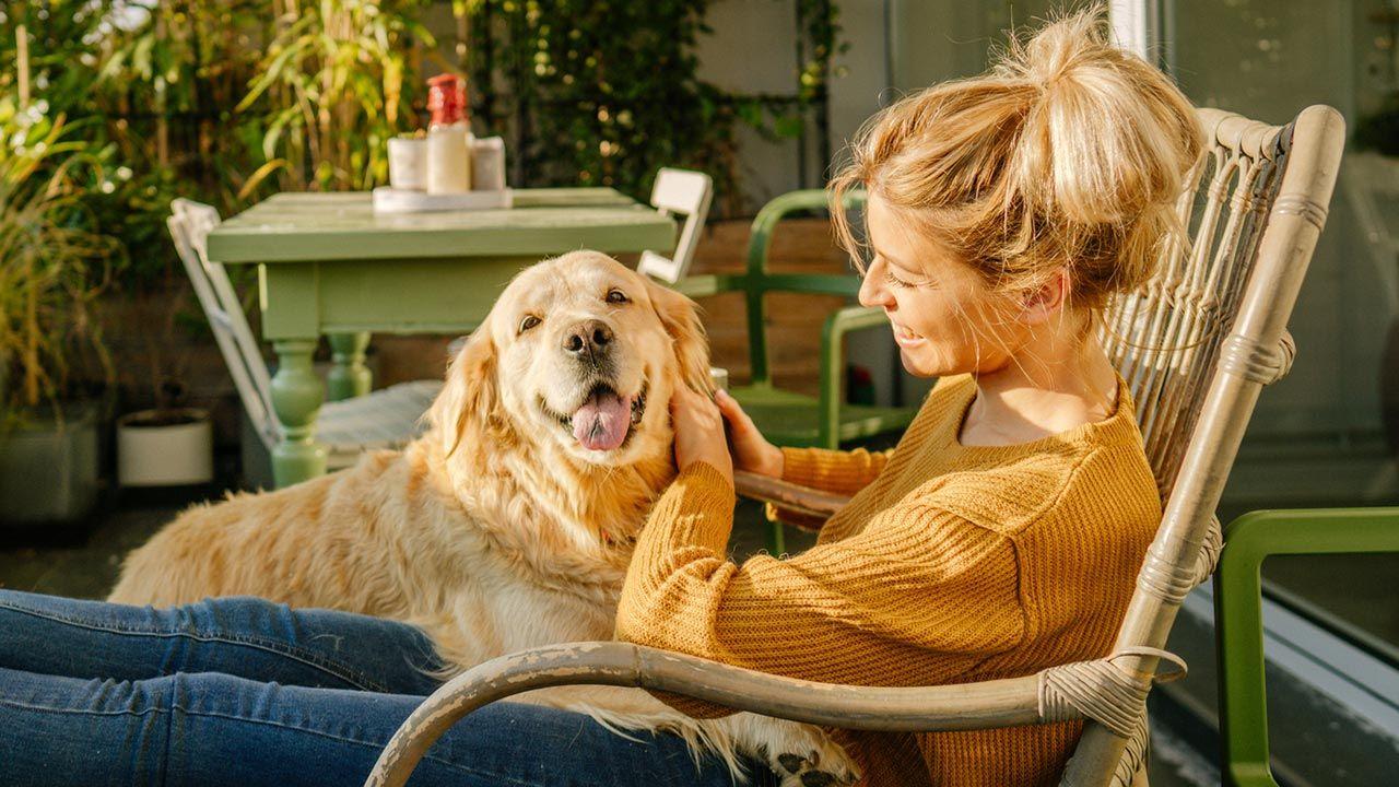 Chica acariciando a su perro