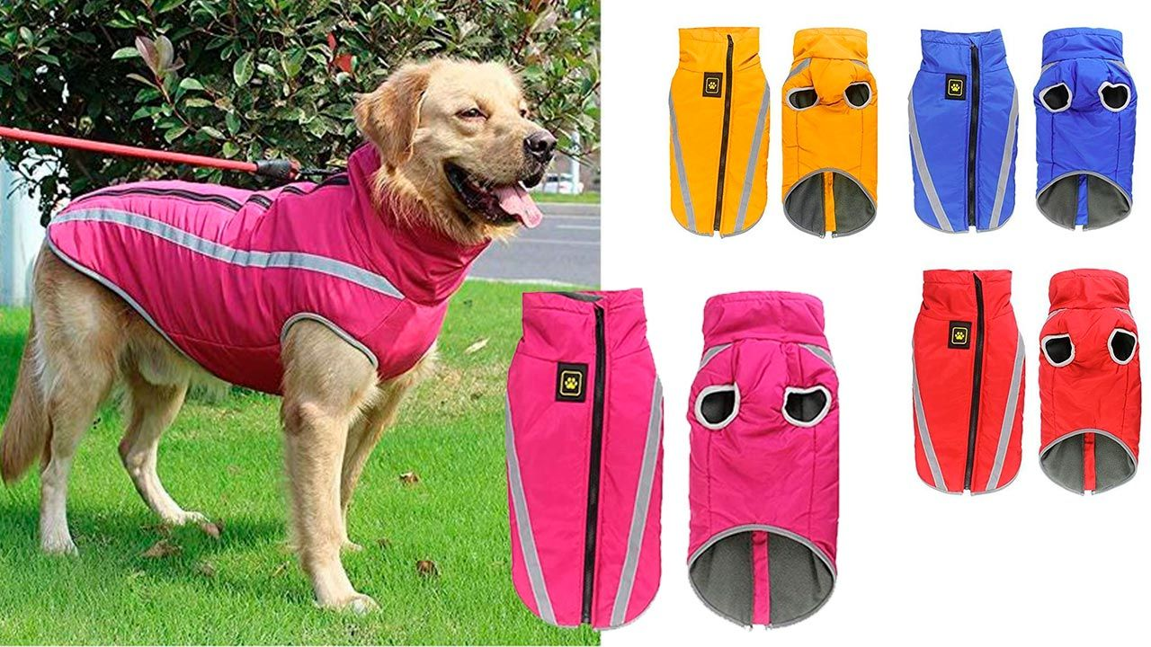 Traje chaleco impermeable (para perros)