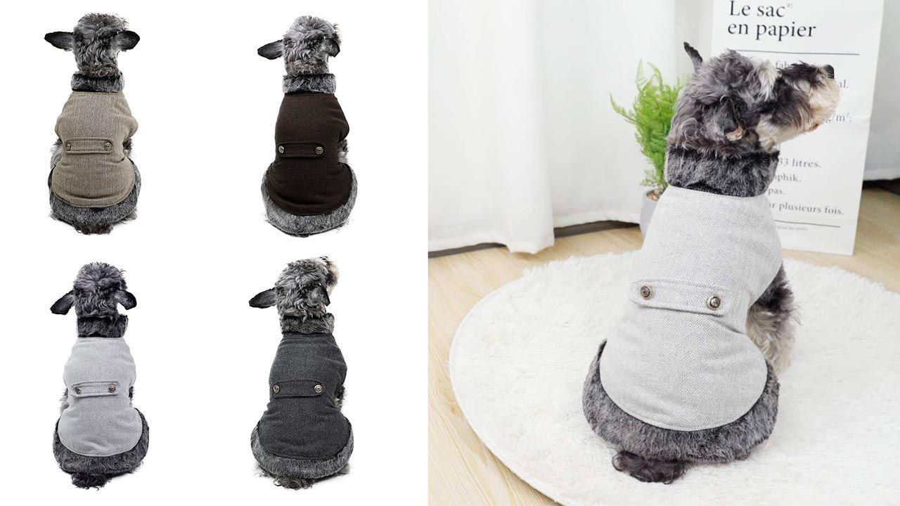 Abrigo elegante y distinguido (para perros)