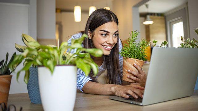 Curso online sobre jardinería